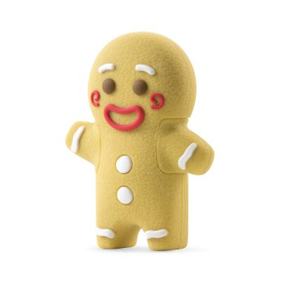 16GB USB-Driver | Gingerman